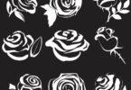rose vectors free