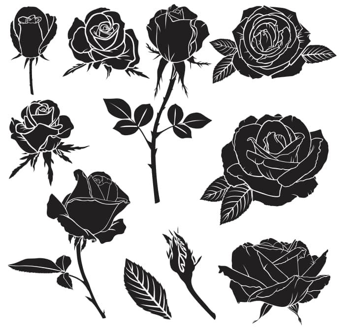 black rose tattoo design