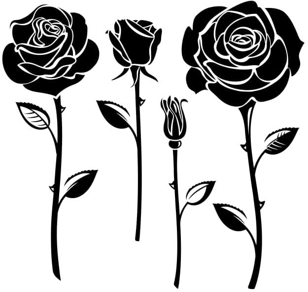 Elegant Black And White Flower Vector Art eps jpg Image