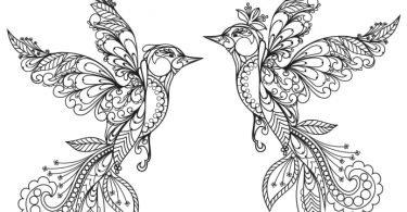 Ornament birds vector Free Vector download