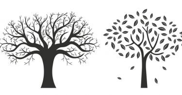 autumn tree vector free
