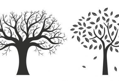 autumn tree vector free