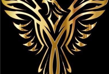 laser cutting phoenix