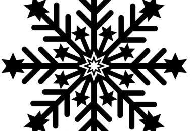 snowflake free vector