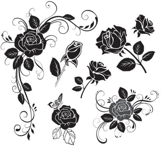flower-rose-vector