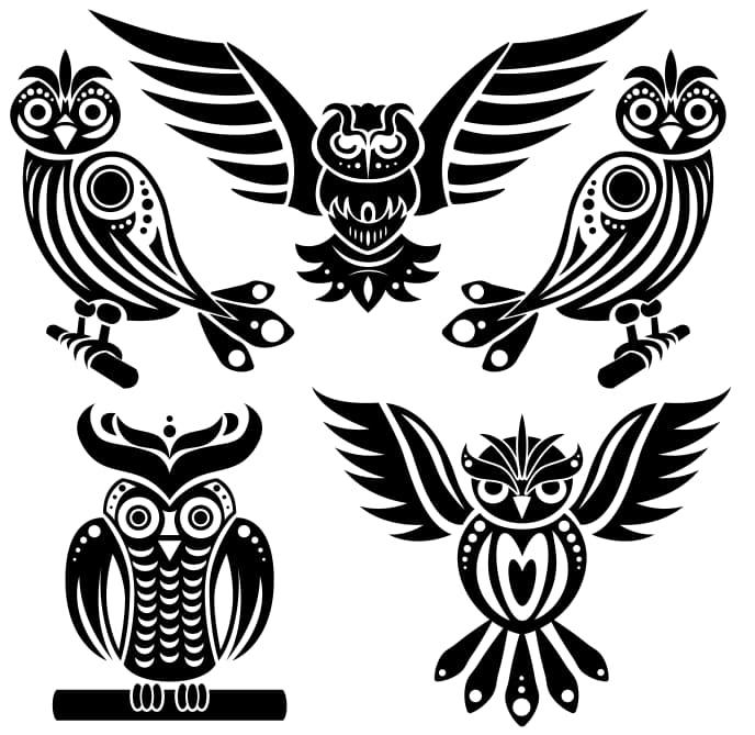 free owl vector